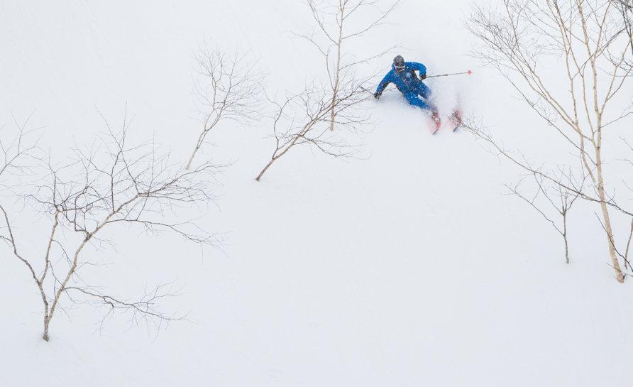 Ski Pow Bine LR 5